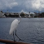 Foto de Walt Disney World Resort