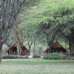 Foto de Keekorok Lodge-Sun Africa Hotels
