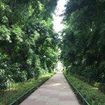 Foto di Lodi Gardens
