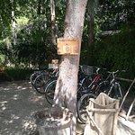 Foto de L'Alyana Villas Ninh Van Bay