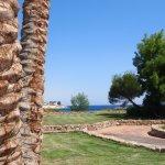 多米納珊瑚灣海藍寶石飯店照片