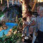 Photo of Magic Aqua Rock Gardens