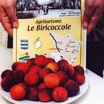 Photo de Agriturismo Le Biricoccole