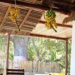 Photo de Antoremba - Lodge