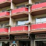 Hotel Moselkern Foto