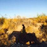 Foto de Stagecoach Trails Guest Ranch