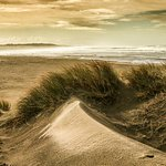 The South Beach Dunes