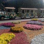 Shevchenko Park