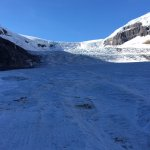 Columbia Ice Field Foto