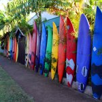 the FAMOUS North Shore outdoor surfboard fence