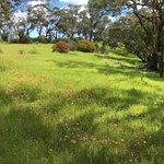 The nearby Onkaparinga River Park