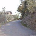 صورة فوتوغرافية لـ Parco del Monte Subasio