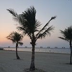 Foto de JA Palm Tree Court