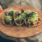Pibil tacos wuth handmade tortillas.