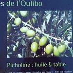 Photo de L'Oulibo