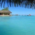 Photo of Pearl Havaiki
