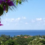 Roatan Bed & Breakfast Apartments Foto