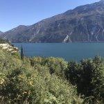 Blick auf den Gardasee zwischen Hotel und Stadt