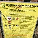 Shellfish Regulations