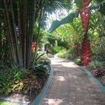 Shangri-La Hotel, The Marina, Cairns Foto