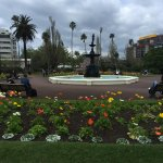 Photo of Albert Park