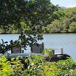 Foto di The River House