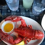 lobster lunch one