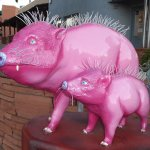 New York has its Cow Parade; Sedona has its Javelina Parade.