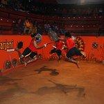 kalari flying fight..