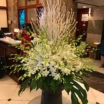 Hotel lobby and beautiful orchids.