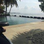 Zdjęcie Purity at Lake Vembanad