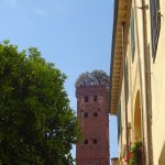Photo of Guinigi Tower