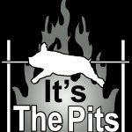 It's The Pits Logo