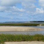 Coastal Delight