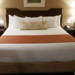 Orange Tree Resort suite