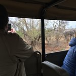 Last major sighting of the trip - a herd of elephants that blocked the road/surrounded our vehic