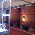 Mucho para aprender sobre los distintos tipos de vinos, barriles, corchos