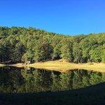 Φωτογραφία: Red Bud Valley Resort