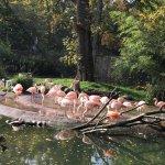 Foto de Leipzig Zoo (Zoologischer Garten Leipzig)