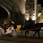 horse drawn carriage at gate
