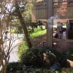 The Woodlands Resort Foto