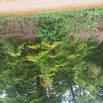 20171013_075127_large.jpg