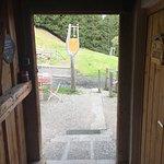 Buchel Alpe