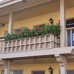 Balcony Flower Boxes