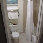 Toilet and shower area