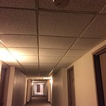 Sad ceiling tiles