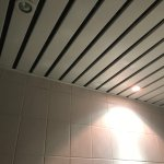 Blown - out bathroom ceiling light