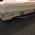 The mattress springs are non-existent. The material is worn badly.