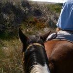 Trail ride to Sonoma state beach