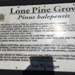 Lone Pine memorial plaque